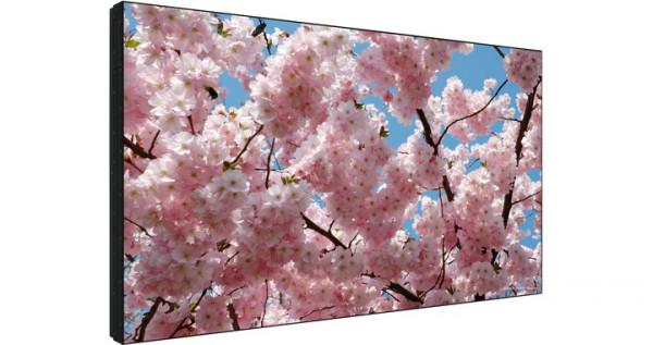 Sharp PN-V600A Digital Beschilderung Flachbildschirm 152,4 cm (60 Zoll) LED WXGA Schwarz