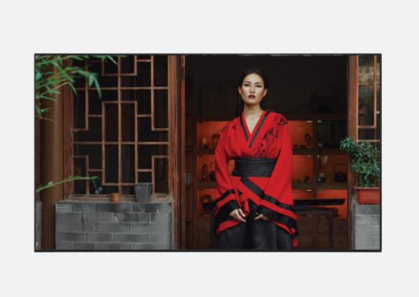 Sharp PN-HB651 165,1 cm (65 Zoll) LCD 4K Ultra HD Digital Beschilderung Flachbildschirm Schwarz Andr