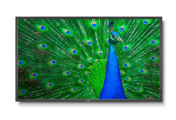 NEC MultiSync C651Q Digital Beschilderung Flachbildschirm 165,1 cm (65 Zoll) LED 4K Ultra HD Schwarz